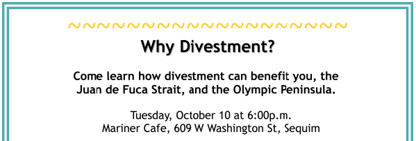 Why Divestment talk inset