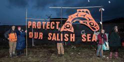protectsign