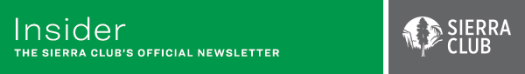 Insider - The Sierra Club's Official Newsletter. Green banner and tree logo.