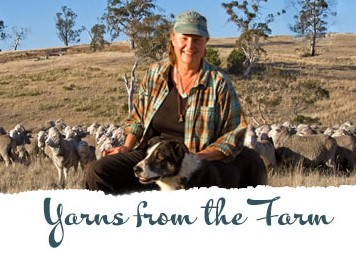 Yarns from the Farm blog. Nan Bray sitting with her shepherd dog, in front of her sheep and hillside in Tasmania, AU.