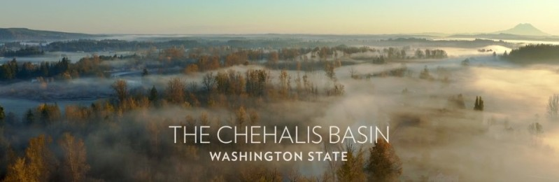 This image has an empty alt attribute; its file name is chehalis-basin.jpg
