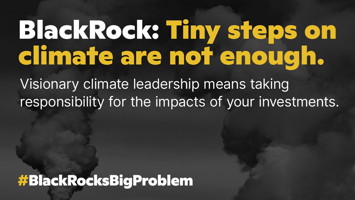 BlackRock: Tiny steps on Climate are not enough. Stop the money pipeline.