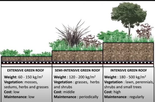 Three types of green roofs