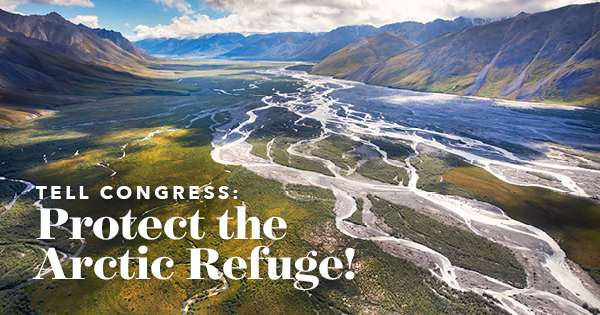 Tell Congress: Protect the Arctic Refuge. Braided river between mountains.