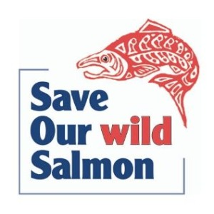Save our wild salmon logo. Words and red, angry salmon.