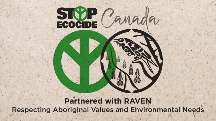 Stop Ecocide Canada. Partnered with Raven.