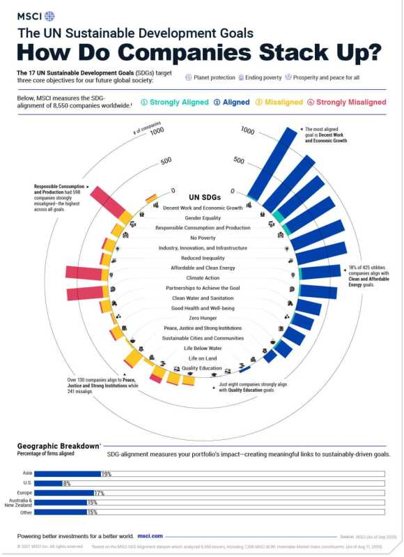 How do global companies stack up with the UN Sustainable Development Goals? Bar graphs on the outside of a circle.