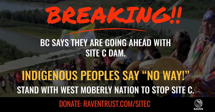 """British Columbia says they are going ahead with site C dam. Indigenous peoples say """"NO WAY!"""""""
