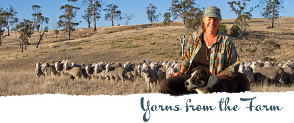 Yarns from the Farm. Nan with sheepdog and sheep.