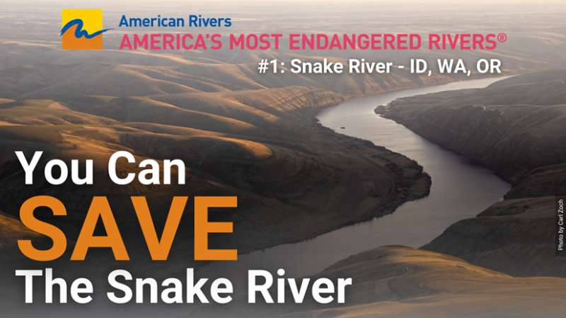 You can save the Snake River. A bend in the river from above.