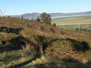 Hilly scrub countryside of Tasmania, AU