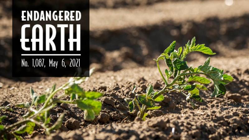 Endangered Earth May 2021