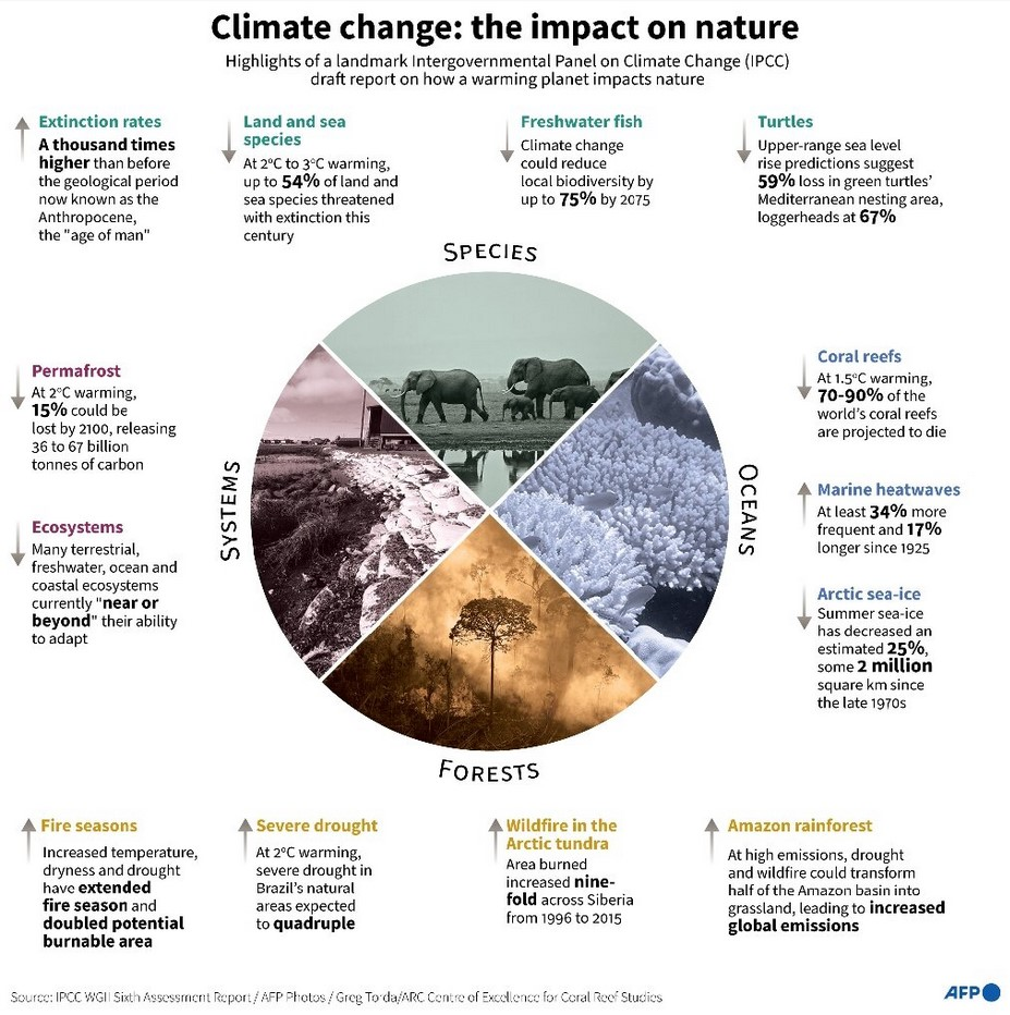 Climate change: the impact on nature. Impacts on Species, Systems, Oceans and Forests.