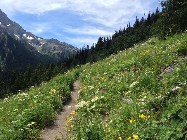 Marmot Pass in the Olympics