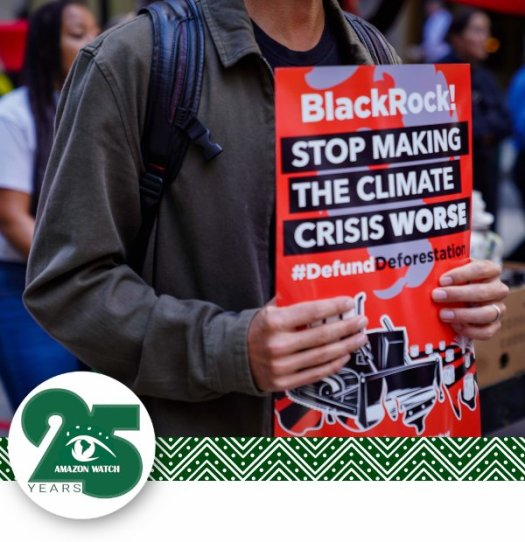 """Man holding protest sign reading, """"Black Rock! Stop Making the Climate Crisis Worse #Defund Deforestation""""."""