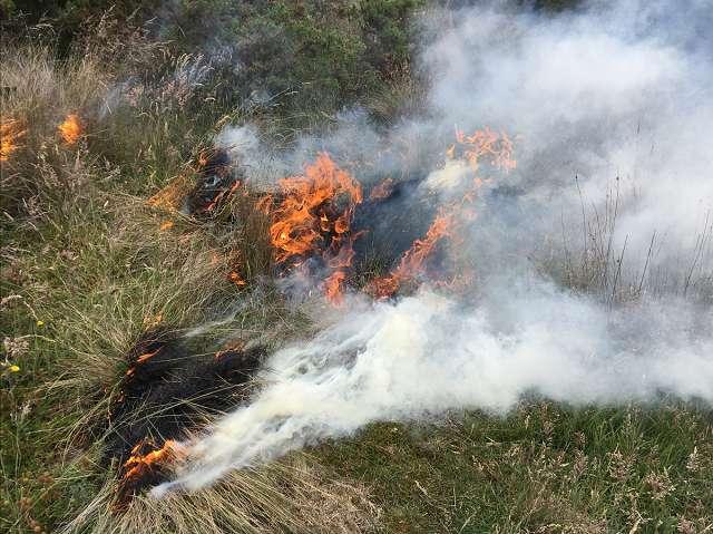 A small fire in the Australian Bush.