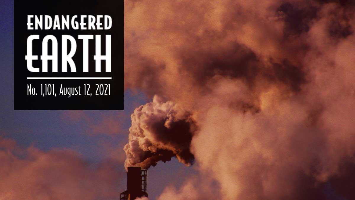 Endangered Earth 9-2021 - Smokestack and cloud of smoke.