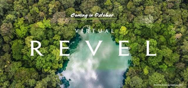 Coming in October - Virtual REVEL
